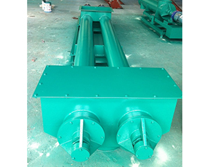 Double screw feeder
